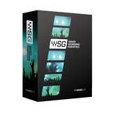 WAVES SG Essential Bundle