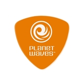 PLANET WAVES 2DOR2-10